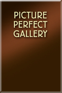 Picture Perfect Gallery in Dundas Ontario